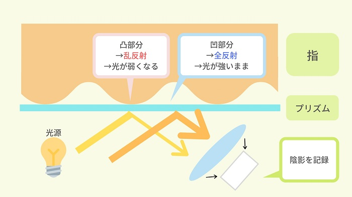 光学式指紋認証の仕組み