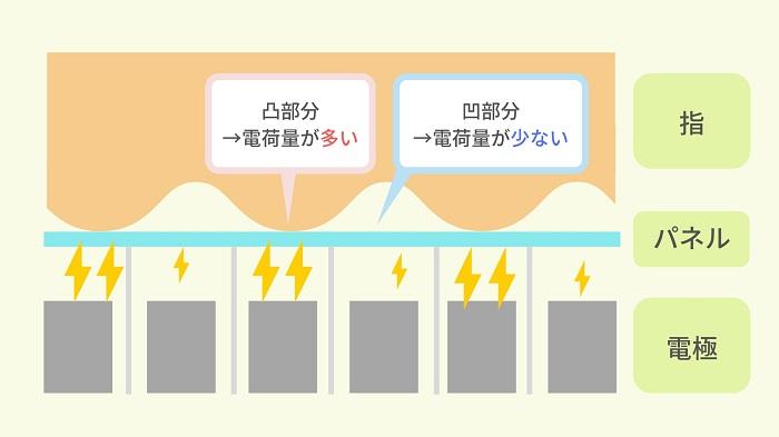 静電容量式の指紋認証の仕組み・原理